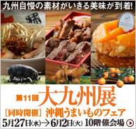 150527kyusyu_side.jpg